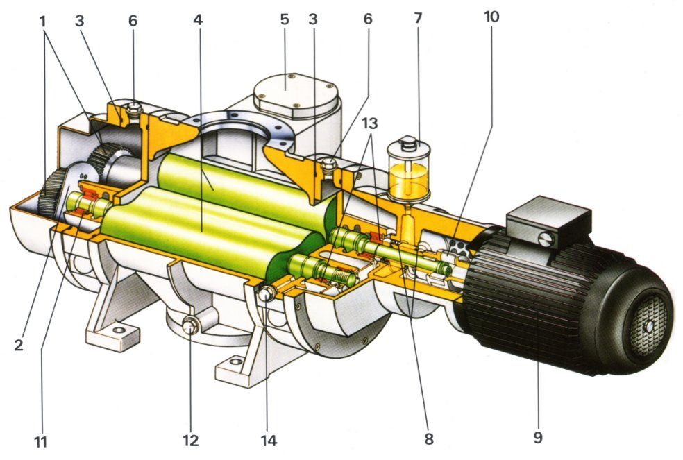 Vacuum pumps and pumping systems - Cutaway view of a Roots pump