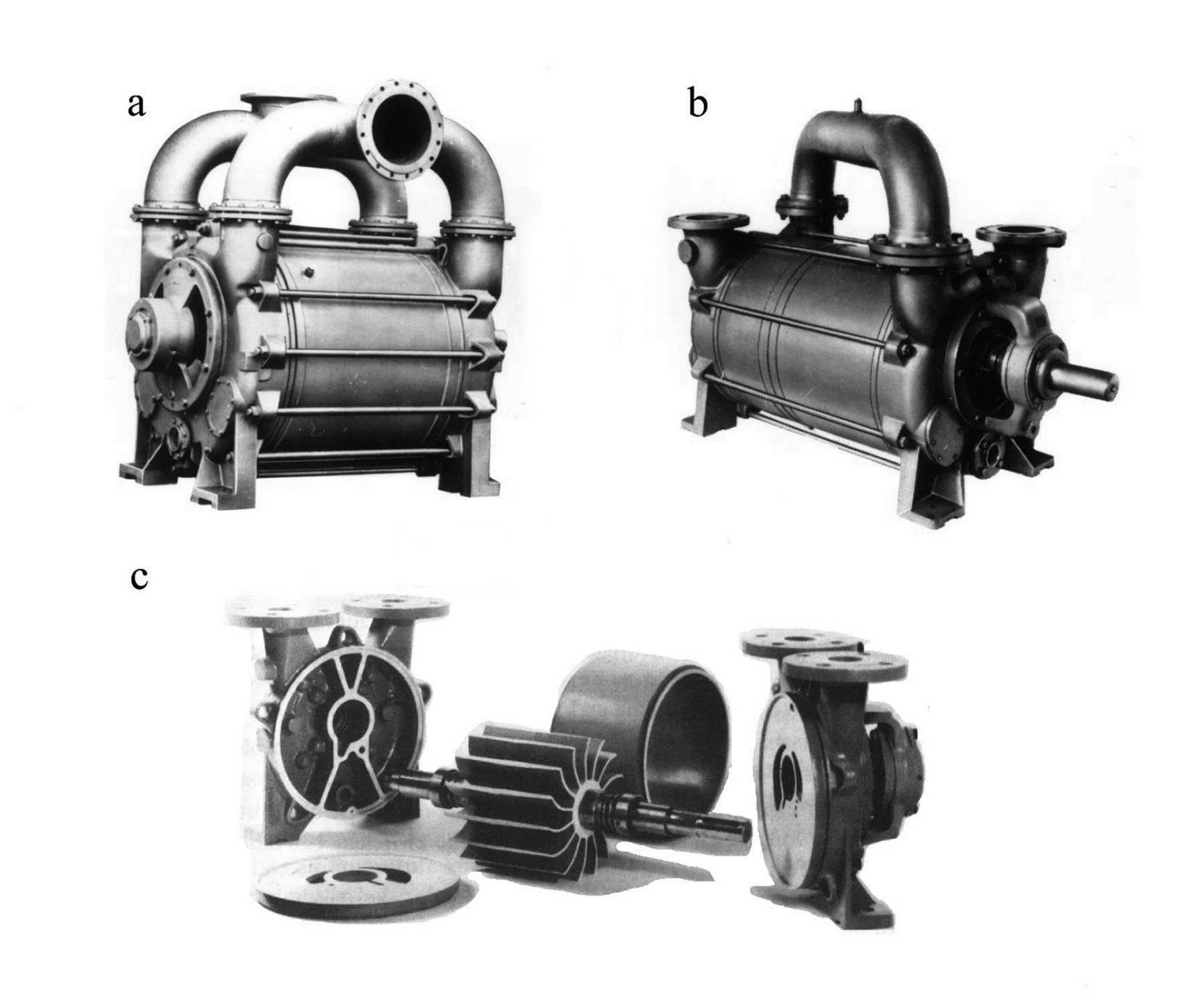 Vacuum pumps and pumping systems - Liquid ring pumps