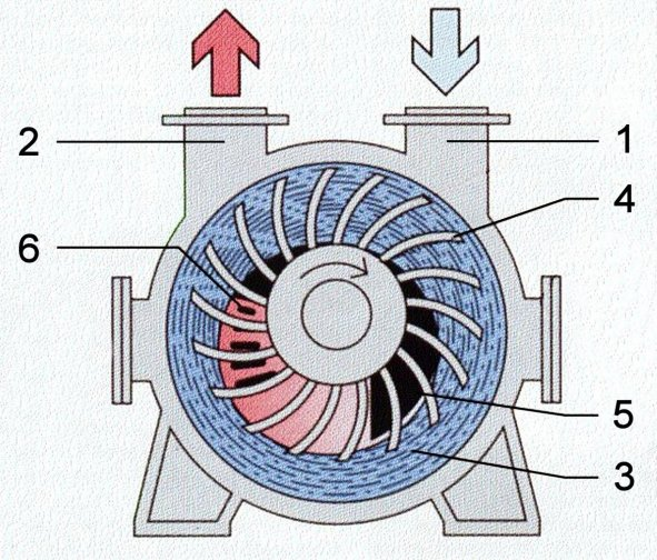 Vacuum pumps and pumping systems - Cross section of a liquid ring pump