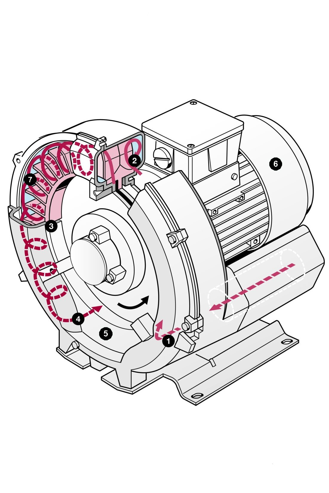 Vacuum pumps and pumping systems - Cutaway view of a single-stage side channel blower